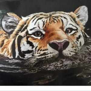 Hand Painted Tiger Porcelain Tile - Debbi Good