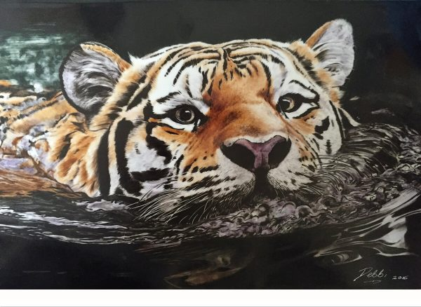 Hand Painted Tiger Porcelain Tile - Debbi Good
