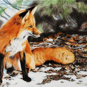 Hand Painted Winter Fox - Debbi Good